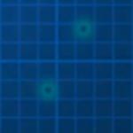 C320-Dot-Blue